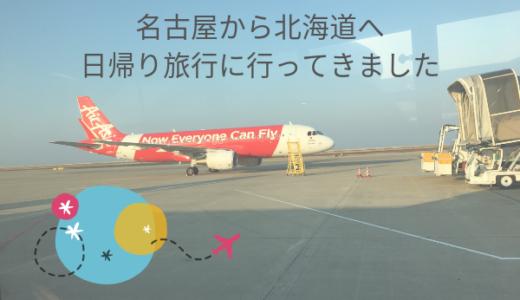 名古屋から北海道へ日帰り旅行に行ってきました【十分遊べます】